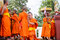 Stock Image : Monks clad to novices.