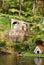 Stock Image : Monte Tropical Gardens, Funchal