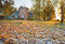 Stock Image : Morning frost in autumn