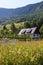 Stock Image : Mountain cottage