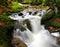 Stock Image : Mountain creek