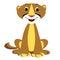 Stock Image : Mountain Lion