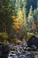 Stock Image : Mountain river in autumn season