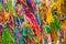 Stock Image : Multicolor thread
