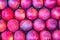 Stock Image : Nectarine  market