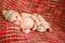 Stock Image : Newborn baby