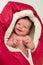 Stock Image : The newborn