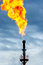 Stock Image : Oil Torch