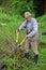 Stock Image : Old gardener