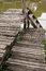 Stock Image : Old wooden pier