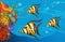 Stock Image :  onderwater