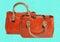 Stock Image : Orange handbag