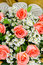 Stock Image : Orange roses flower bouquet