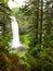 Stock Image : Oregon portrait