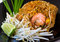 Stock Image : PAD THAI