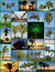 Stock Image : Palm Trees Collage
