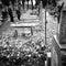 Stock Image : Panta rhei. Artistic look in black and white.