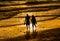 Stock Image :  Pares que caminan sosteniendo la playa de las manos