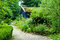 Stock Image : Path and cottage in natural garden