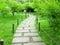 Stock Image : Pathway