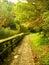 Paved park paths