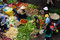 Stock Image : People sell and buy vegetables at open air market. DA LAT, VIET NAM- FEBRUARY 8, 2013