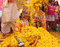 Stock Image : Phoolon Ki Holi : Holi with flowers