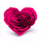 Stock Image : Pink Rose Heart