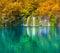 Stock Image : Plitvice lakes of Croatia - national park in autumn