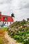 Stock Image : Point Betsie Lighthouse