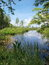 Stock Image : Poleski National Park, Poland