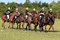 Stock Image : Polocrosse Line Up