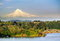 Stock Image : Portland Steel Bridge and the Mt hood