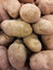 Stock Image : Potatoes background texture