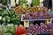 Stock Image : Provence, France