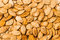 Stock Image : Pumpkin Seeds