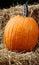 Stock Image : Pumpkin On Straw