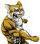 Stock Image : Punching wildcat mascot