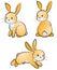 Stock Image : Rabbit-set