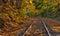 Stock Image : Railway tracks with fall foliage