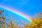 Stock Image : Rainbow