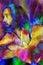 Stock Image : Rainbow man