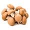 Stock Image : Raw mushrooms