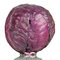 Stock Image : Red cabbage