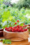 Stock Image : Red currants in wooden bowl on on windowsill