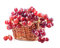 Stock Image : Red grape in basket