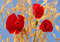 Stock Image : Red poppies against a bright blue sky