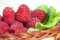 Stock Image : Red raspberry