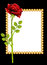 Stock Image : Red rose and greeting-card