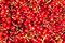 Stock Image : Redberries